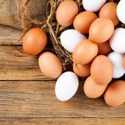 GMO, czyli genetycznie modyfikowane organizmy